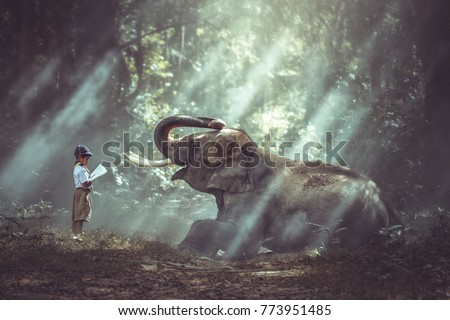Boy student reading book with young elephant forest.