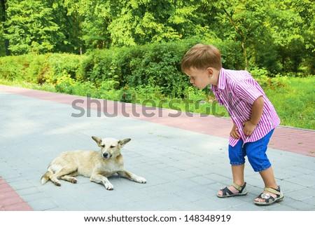 Boy talks to dog - stock photo
