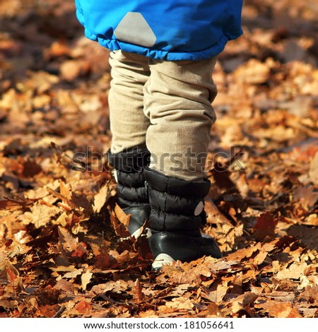 boy walking amongst faded leaves on a country road in autumn season - stock photo