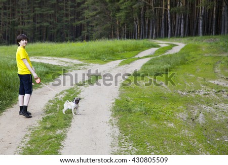 Boy walking with a dog near the forest on a summer day - stock photo