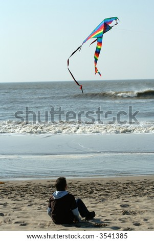 Boy Watching Kite Flying At The Beach