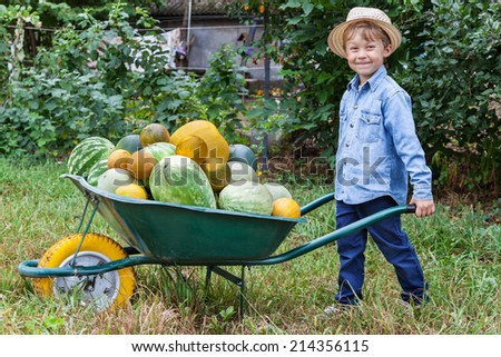 Boy with a full wheelbarrow in garden helps harvest crops - stock photo