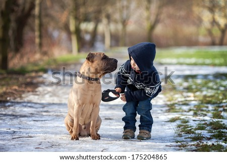 Boy with cute dog, giving him a kiss - stock photo