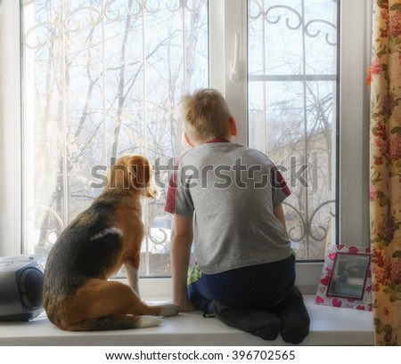 Boy with his dog waiting together near the window - stock photo