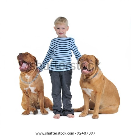 Boy with his dogs isolated on white