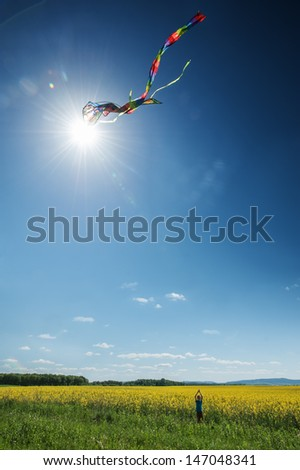 boy with kite on meadow - stock photo