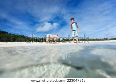 Boy with little piglet at Exuma beach, Bahamas - stock photo