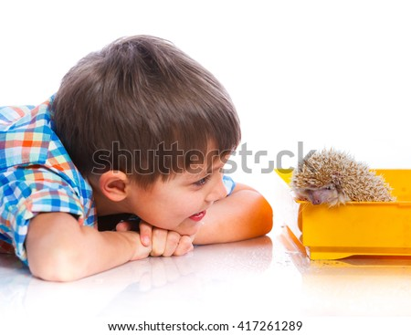 Boy with pet. Little boy plays with white hedgehog. Isolated on the white background - stock photo