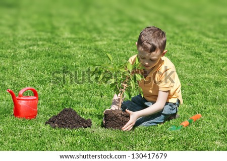 boy with tree on lawn - stock photo