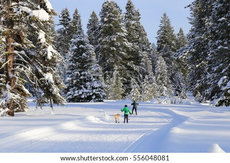 Boys cross country skiing with their dog in McCall, Idaho