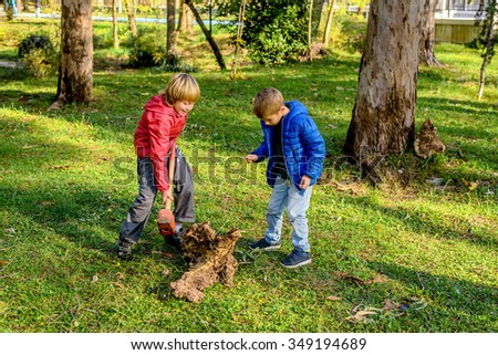 Boys destroying wood trunk with sledge hammer in the park - stock photo