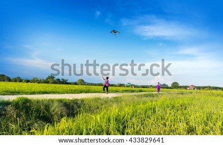 boys flying a kite in a paddy field - stock photo