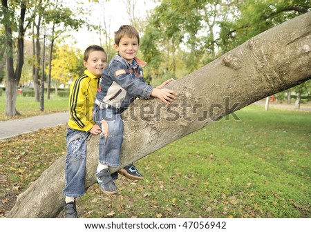 boys hanging from the branch of a tree - stock photo