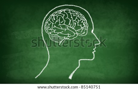 Brain drawing with chalk on green board - stock photo
