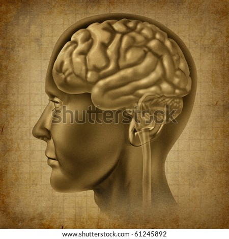 Brain intelligence mind ancient grunge old medical parchment  document - stock photo
