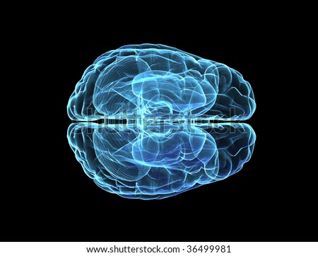 Brain model xray blue look isolated on black background - top view - stock photo