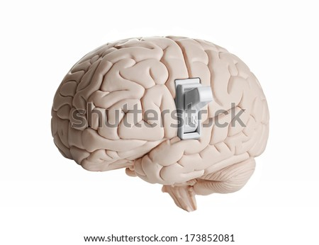 Brain power. Brain model with a light switch