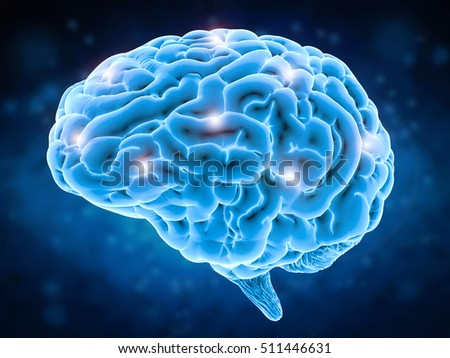 brain power concept with 3d rendering human brain