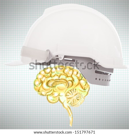 brain protect use for business and know how protection etc.