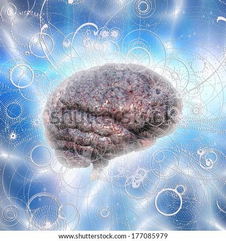 Brain Radiates - stock photo
