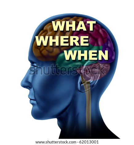 brain what where when decision choice concept isolated