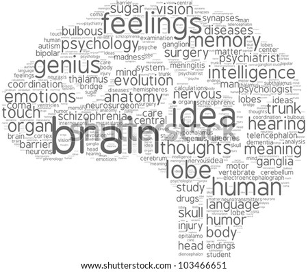 brain word cloud with grey words on a white background / brain tag cloud pictogram - stock photo