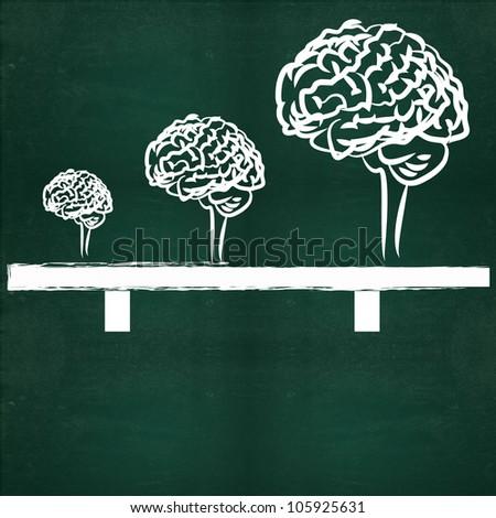 Brains on blackboard background - stock photo