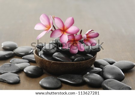 Branch frangipani flower in wooden bowl