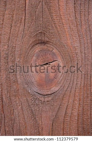 Branch in Wood Structure - stock photo