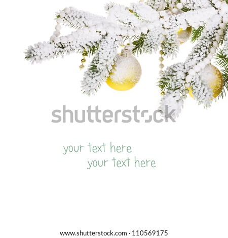 branch of a Christmas tree with gold balls and snow, isolated on white background