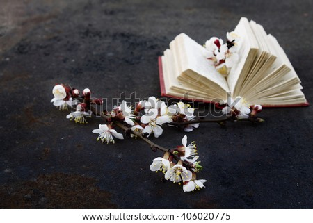 branch of blossoming apricot with grunge metal background with blurred open book. Toned photo. (shallow depth of field)