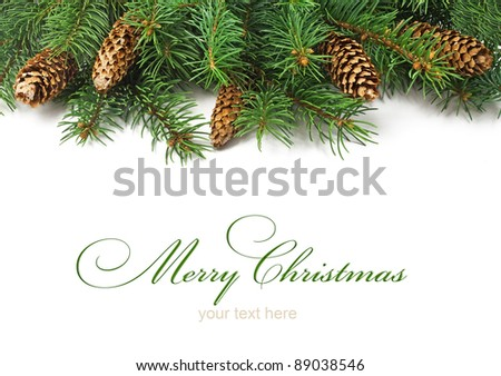 Branch of Christmas tree and cones on white background - stock photo