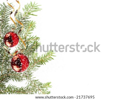 branch of Christmas tree on white with red balls