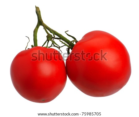 Branch of red tomatoes, isolated on a white background