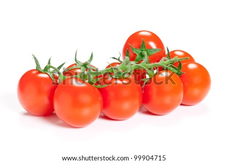 Branch of ripe tomato isolated on white background. - stock photo