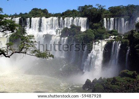 Branch of tree and wide Iguazu waterfall in Argentina - stock photo