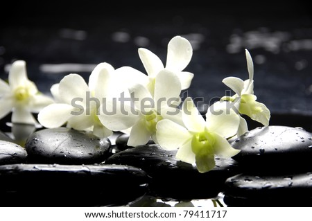 branch orchid with therapy stones on pebble - stock photo