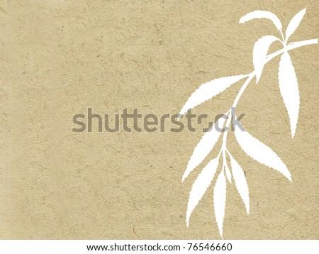 branch osier on grunge background - stock photo