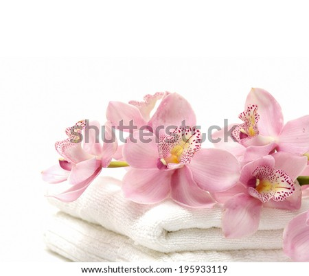 Branch pink orchid and towel on white background