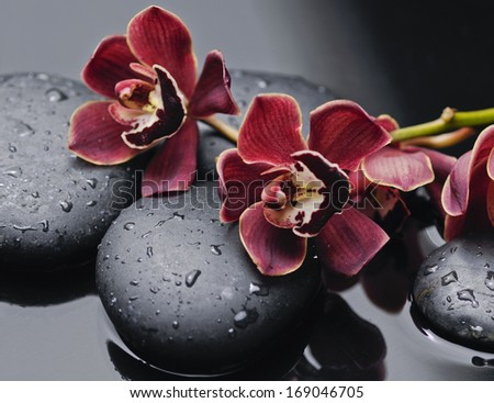 branch red orchid with therapy stones  - stock photo