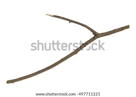 branch Stick or twigs isolated on white background