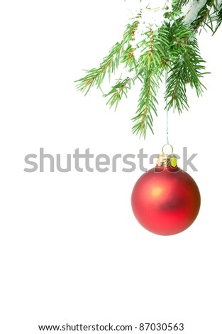 Branch with a Christmas toy on a white background - stock photo