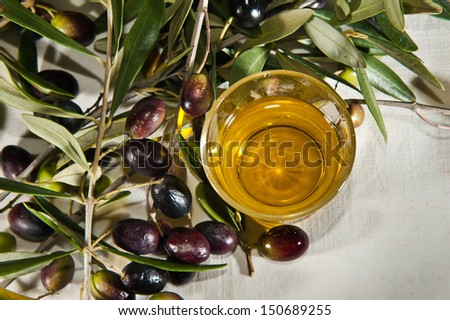 Branch with olives and olive oil - stock photo