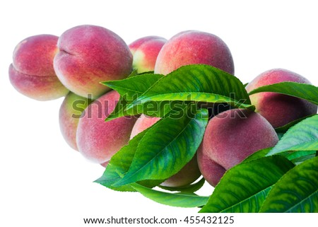 branch with ripe fruits peach on a branch isolated on a white background in macro lense shot - stock photo