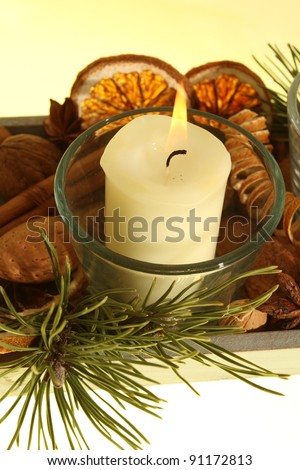 Branches of cinnamon candles - stock photo