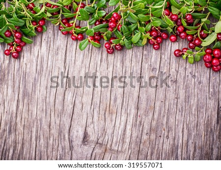 Branches of ripe red juicy cranberries on the texture wooden dark background. Top view. Copy space. - stock photo