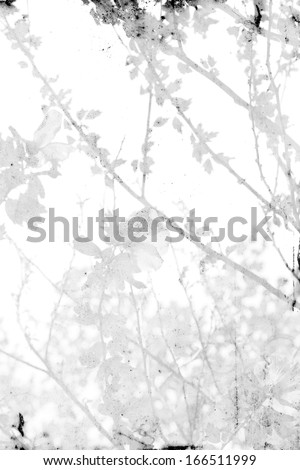 branches with paper texture - background