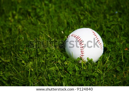 Brand New White Baseball Sitting in the Grass