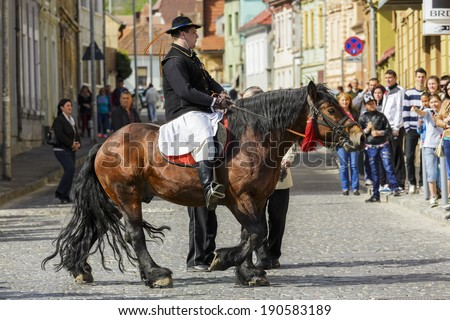 BRASOV, ROMANIA - APRIL 27: Unidentified horseman rides brown dray-horse as a member of Young Junii group during the old traditional parade Junii Brasovului on April 27, 2014 in Brasov, Romania.