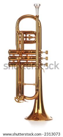 Brass cornet standing upright, short on white background - stock photo